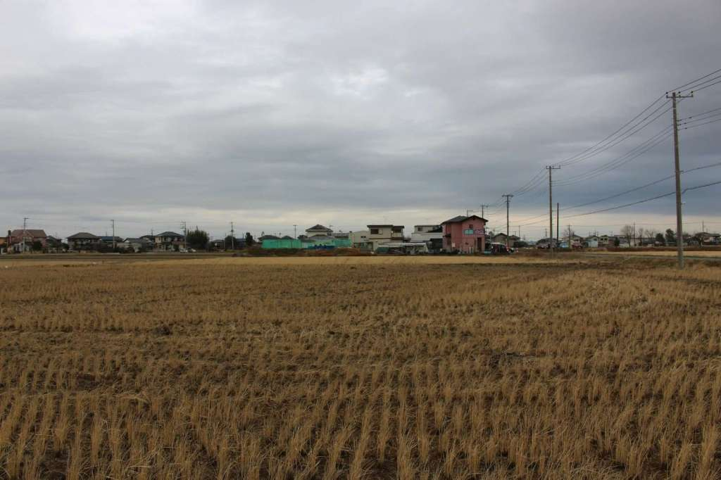 rice fields around Tsuribori in Kawajima town