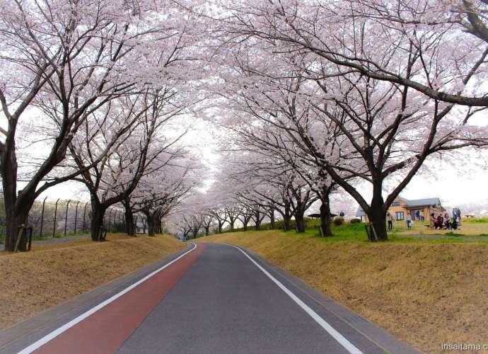 Higashimatsuyama Norin Park
