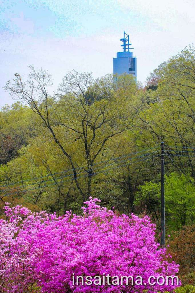 Azalea Monomiyama Park and Peace Museum Observation Tower