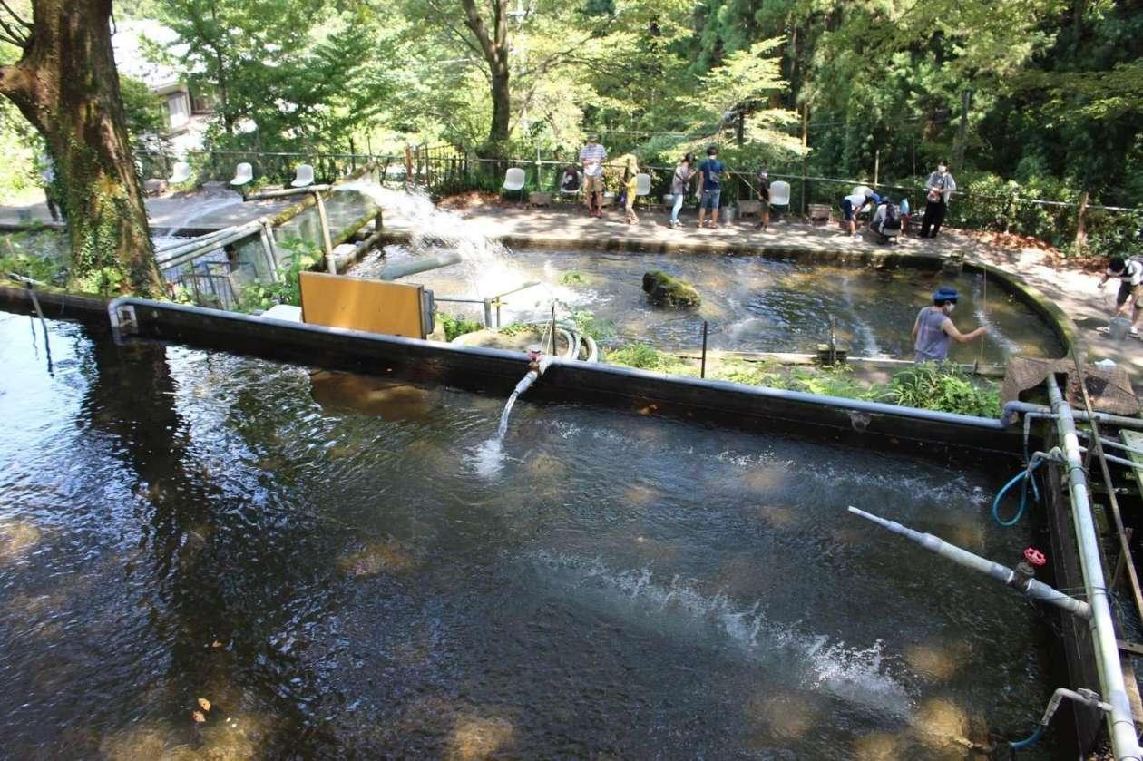 Fuppu Nijimasu Fishing ponds