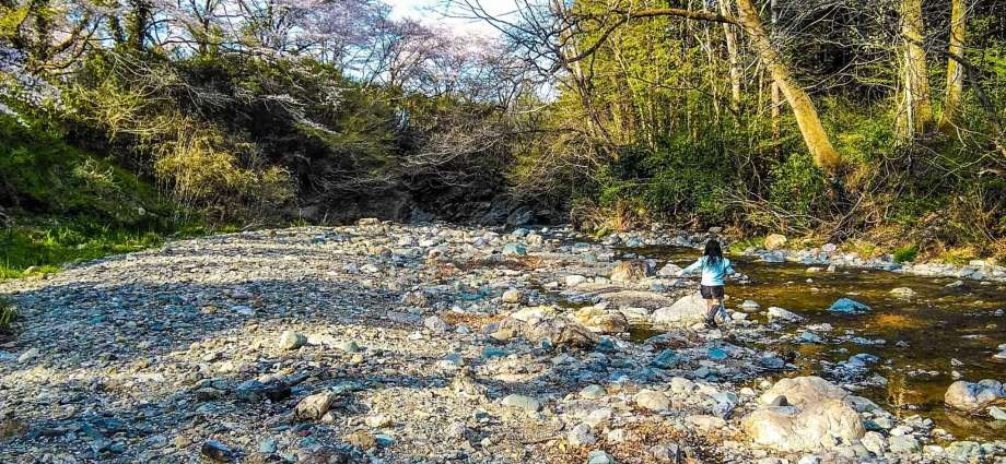 river play Ogose