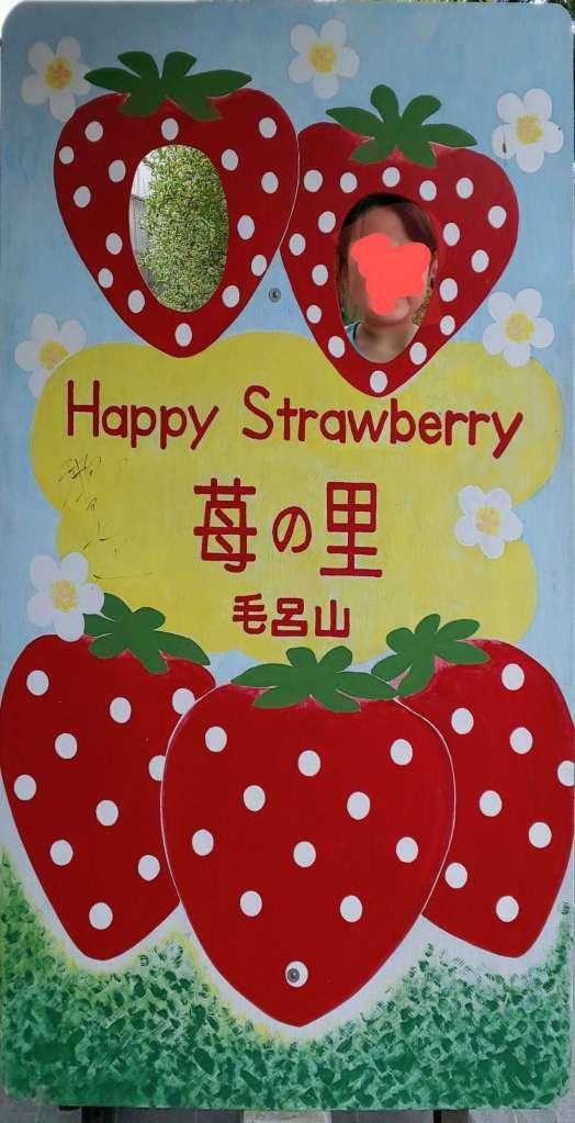 strawberry picking Moroyama Ichigo no sato barrier free