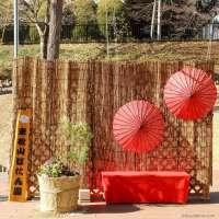 Botanen Park in 2021 | HIGASHIMATSUYAMA