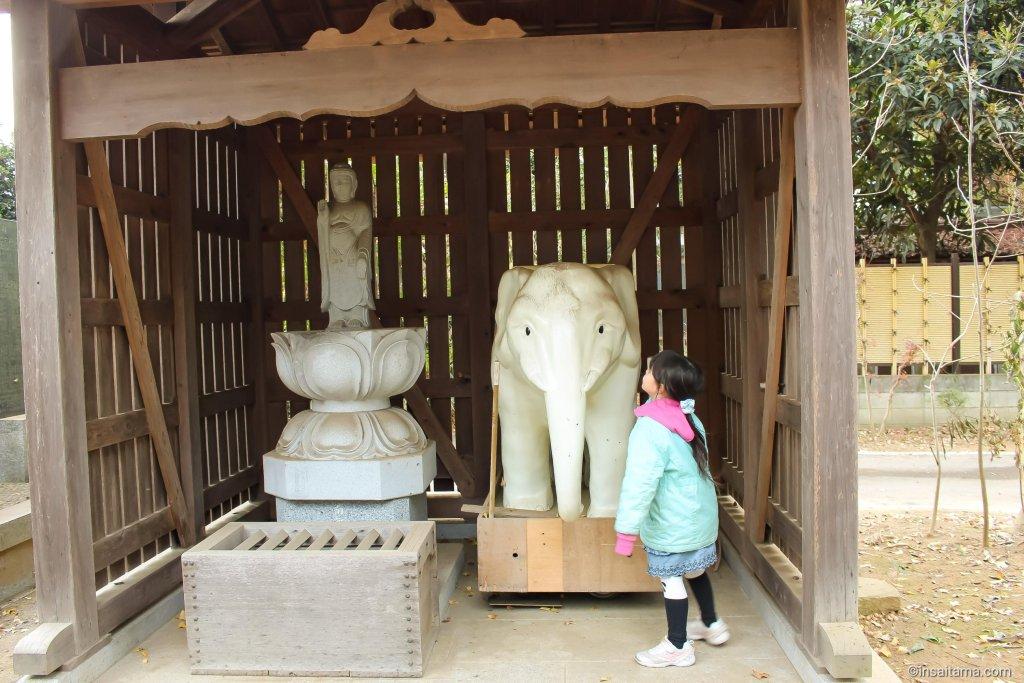 Elephant at Tokushoji