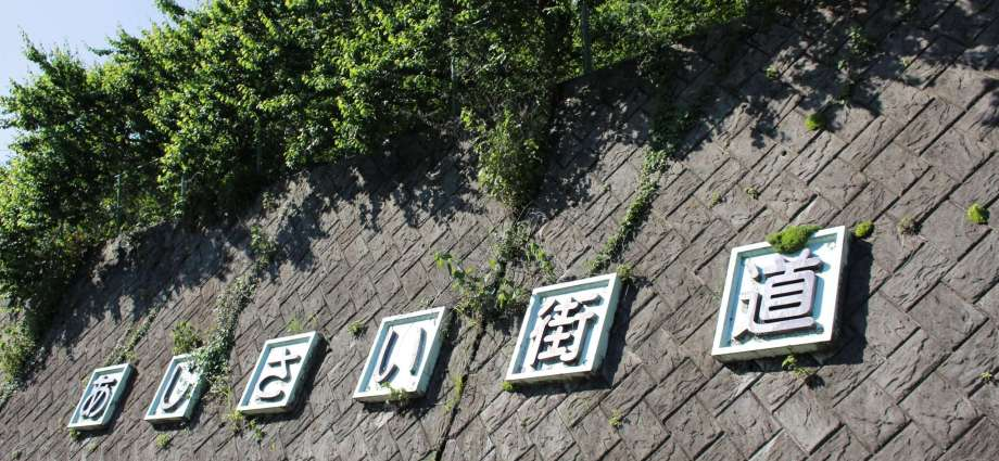 Ajisai Kaido Hydrangea Road or Way in Ogose Town Saitama Prefecture