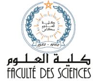 7- Faculté des sciences et techniques de Meknès