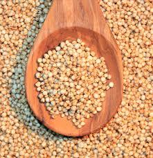 Quinoa-2.jpg?fit=221%2C228&ssl=1