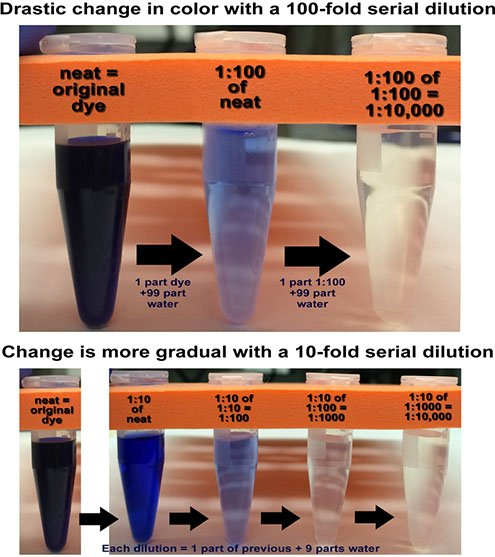 dilution effects on dye