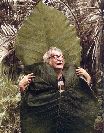 Roberto Burle Marx in an aroid (not this particular one)