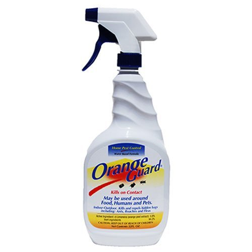 Spectracide Have Really Scored A Home Run With This Ant Killer Spray Of Theirs It S One The Best Products Sort Out There Today