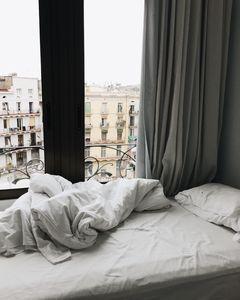 Дървеници унищожаване 1 - легло
