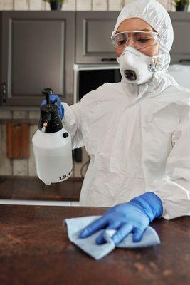 Препарат за бълхи на закрито 1 - пръскане на закрито