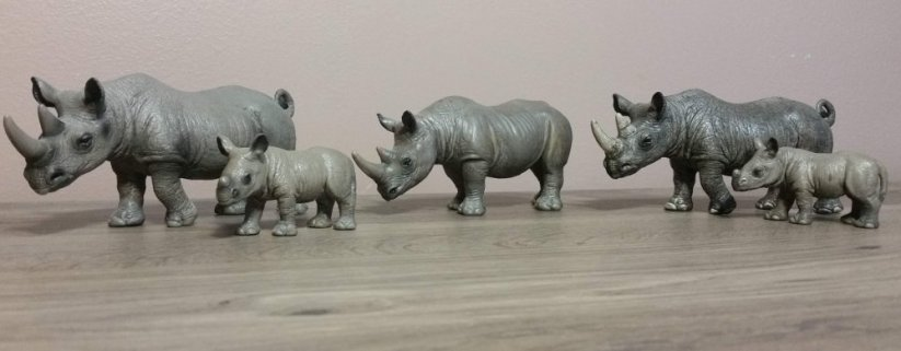 Black rhino collection