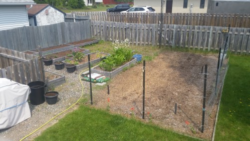 The garden in June after plating. Not much to see here!