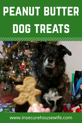 Make sure to bake your dog something special this Christmas with these peanut butter dog treats. A simple and delicious treat for your furry friend.