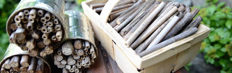 Insektenhotel Dose Anleitung
