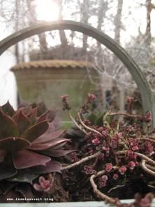 mon-herbst-winter-2016-17-busene-31-01-17