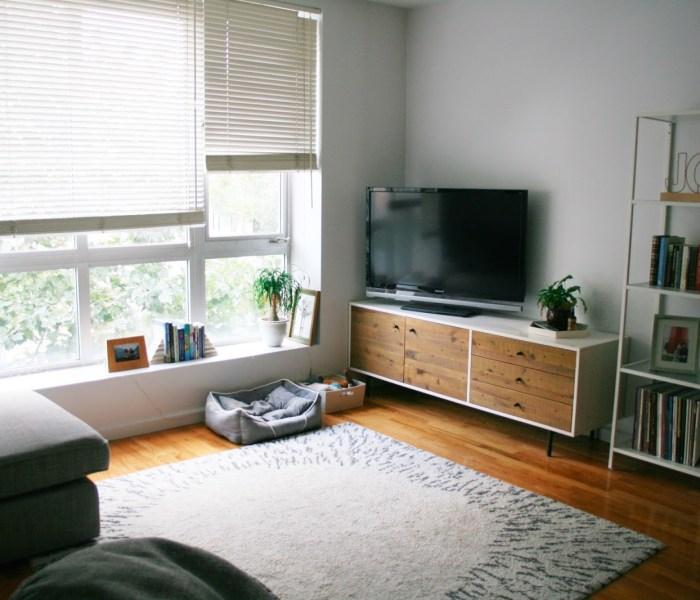 Snapshots of a Brooklyn Apartment