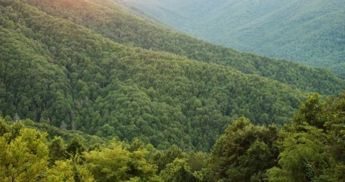 Nantahala National Forest. - Foto: VisitNC