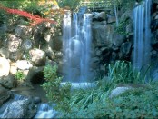 Anderson Japanese Gardens in Rockford, Illinois. - Foto: Rockford Area CVB