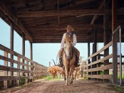 In den Fort Worth Stockyards wird die Tradition der Cowboys gelebt. - Foto: Texas Tourism