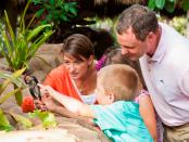 Children's Rainforest Garden in Marie-Selby-Botanical-Gardens. - Foto: Visit Sarasota County