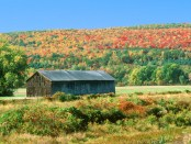 Herbst in Deerfield. - Foto: Massachusetts Office of Travel and Tourism