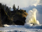 Natur pur am Long Beach Light House. - Foto: Port of Seattle