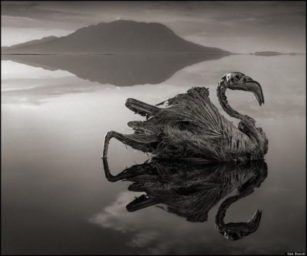 Lake Natron Tanzania