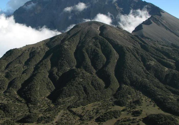 Mount Meru-Climbing in Arusha, Tanzania