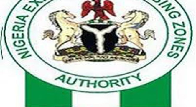 Nigeria's Population Alone Can't Attract Foreign Investments – NEPZA Boss