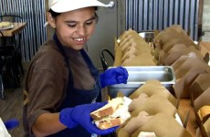 Special education student filling lunch boxes with sandwiches at a cafe.