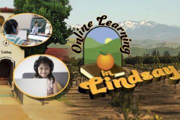 online learning in Lindsay