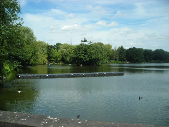 South Norwood Park: not the Lake District, but an effective PR stunt done by locals. And not our council