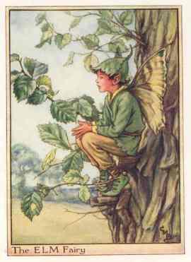 Elm Fairy - Cicely Mary Barker