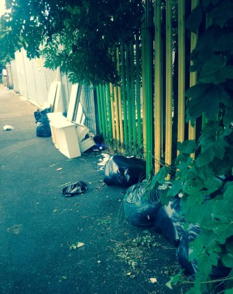 Fly-tipping outside a Croydon park this week