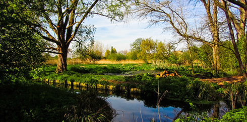 Croydon Council has stepped away from the organisation which wanted to created a Regional Park along the Wandle valley
