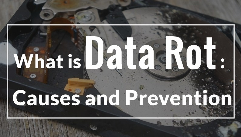What is Data Rot: Causes and Preventions