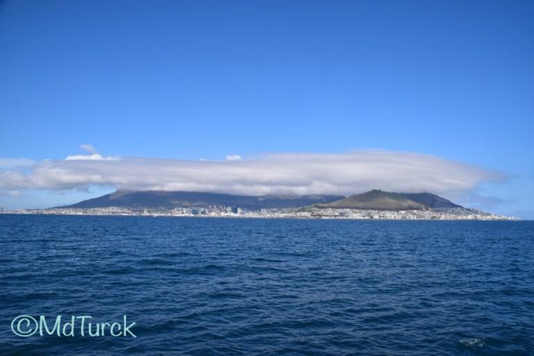 Bestemmingstips: Omgeving Kaapstad – Stellenbosch & Robben Island