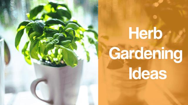 Indoor Herb Garden Ideas Kitchen Wall Herb Garden Indoor