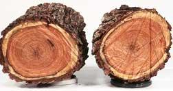 2-logs