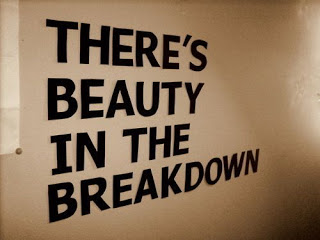 there_s_beauty_in_the_breakdown__tumblr_
