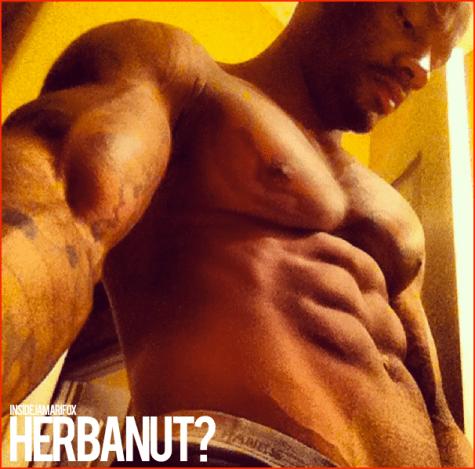 HERBANUT