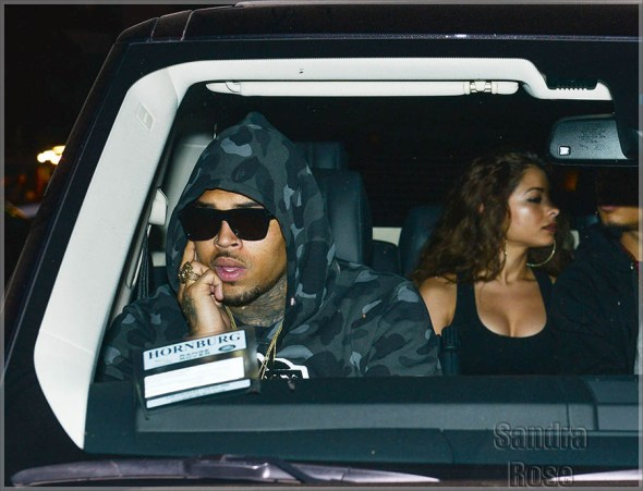 Chris-Brown-and-chicks2-INF