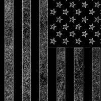 make america great again with the black american flag? (pending civil war?)