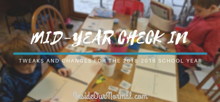 Mid-year Check-in 2018-2019 School Year
