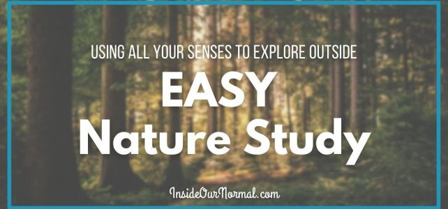 Basic Nature Study: Using Your Senses