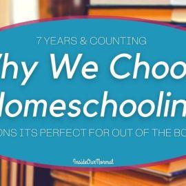 9 Reasons Why We Homeschool