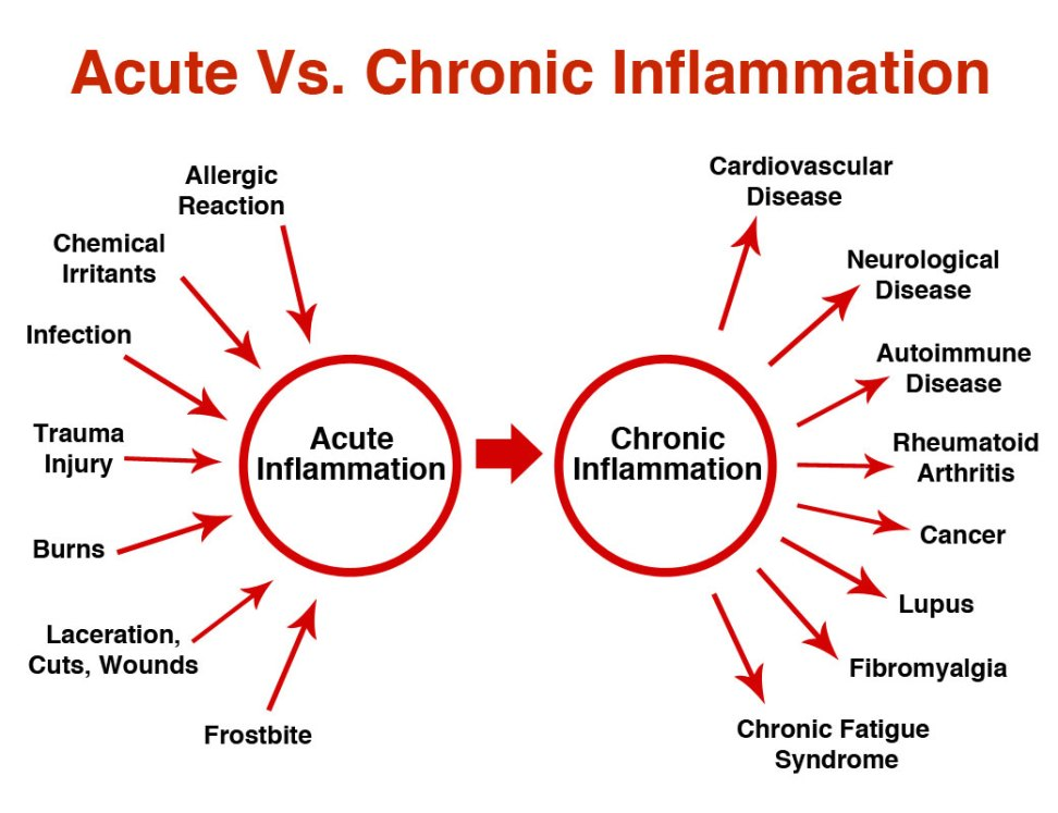 How to Combat Chronic Inflammation   Inside Out Health & Wellness