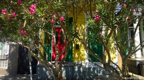 nola-colorful-house-with-oleander
